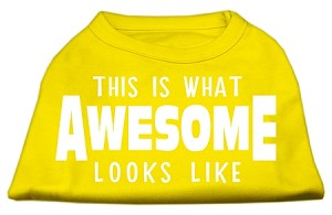 This is What Awesome Looks Like Dog Shirt Yellow Lg (14)