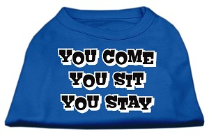 You Come, You Sit, You Stay Screen Print Shirts Blue Lg (14)