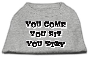 You Come, You Sit, You Stay Screen Print Shirts Grey L (14)