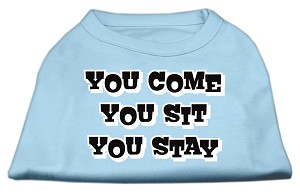 You Come, You Sit, You Stay Screen Print Shirts Baby Blue XXL (18)