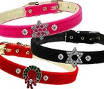 Holiday Collar Overstock Lot <br> $200 worth of assorted collars for $100 <br> Retail value over $400!