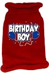 Birthday Boy Screen Print Knit Pet Sweater SM Red