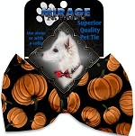 Pumpkin Patch Pet Bow Tie